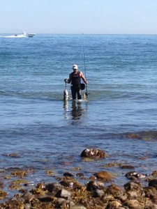 THE FISH WALKER: Pete was nailing a bluefish on virtually every cast