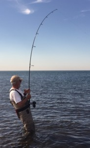 Amazing Randy: Sharpshooting a gangster bluefish in a placid sea.