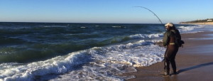 CAN'T MISS DAN: Battling the blues on Montauk Town Beach